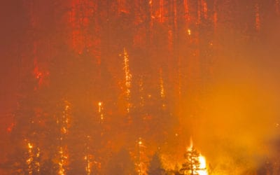 Western states brace for most severe wildfire outbreak since 2012